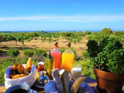 Frukosten på Torralbenc serveras på den egna terrassen – utan extra kostnad.