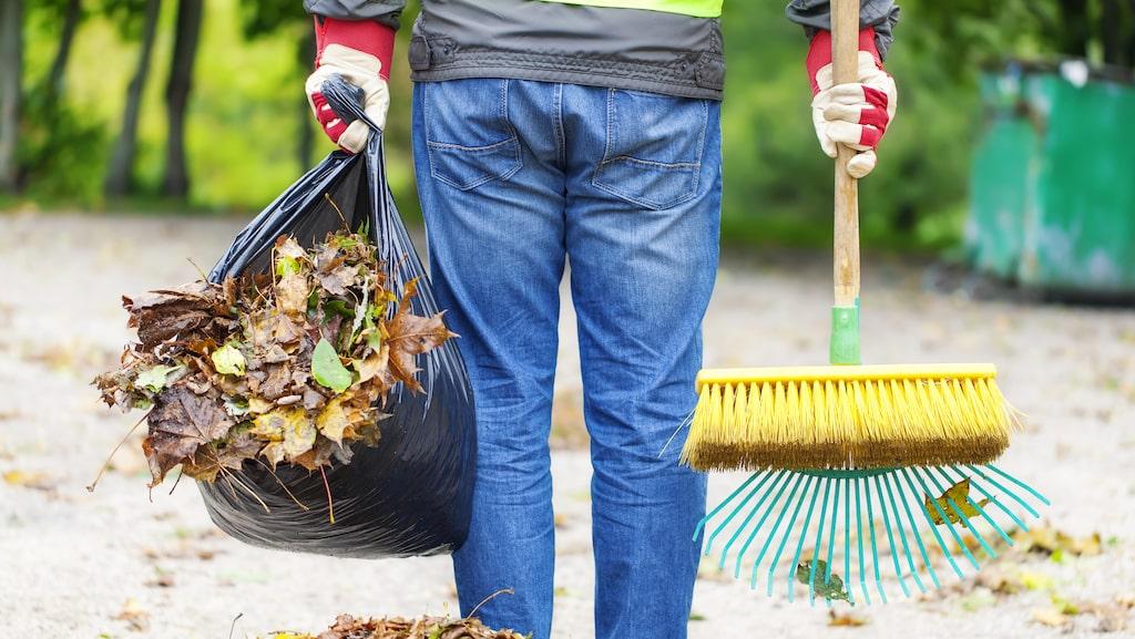 Orkar du inte kratta löven i höst? Ta då kontakt med flitiga ungdomar i din närhet med Yepstr.