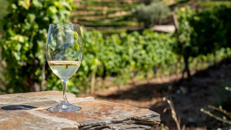 Portugal producerar många friska vita toppviner. Dessa tre har alla fått ett högt betyg i magasinet Allt om Vin.