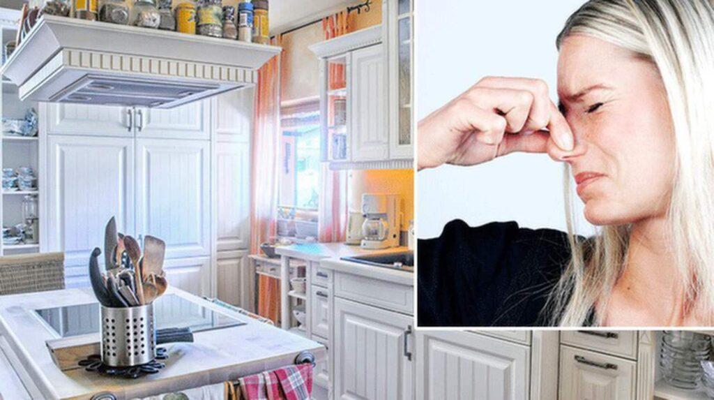 Luktar det äckligt i kylskåpet? Stäng av kylen och plocka ut allt som finns. Placera ömtåliga livsmedel i kylväskor eller utomhus om det är vinter. Tvätta ur kylskåpet med ljummet vatten och diskmedel. Vid dålig lukt hjälper det också att sätta in en halv citron med snittytan uppåt.