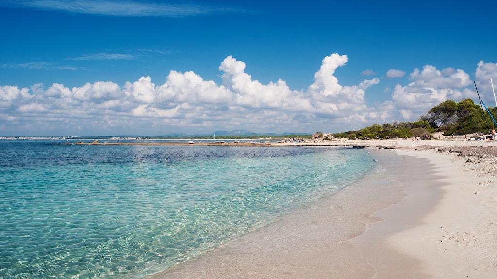 Mallorca är svenskarnas absoluta favoritresmål för en strandsemester. Här Es Trenc, som ofta nämns som en av öns bästa stränder.