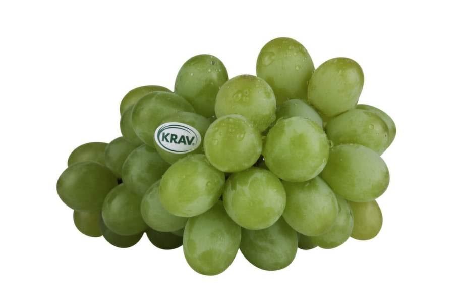 <strong>7 VINDRUVOR.</strong><p>Ännu     en frukt som är hårt   besprutad. I  ett  EU-stickprov i ett paket     vindruvor hittades rester  av  så många   som 26 olika kemiska     bekämpningsmedel.</p>