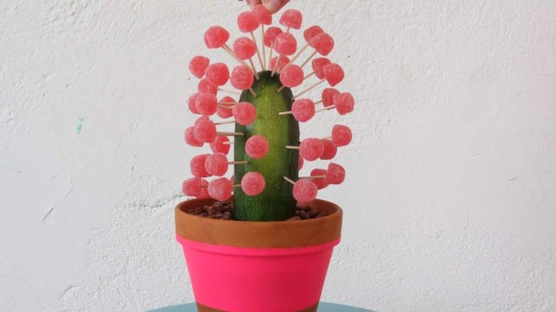 Bra present. Gå-bort-kaktusen är lätt och rolig att göra och blir en uppskattad gåva.