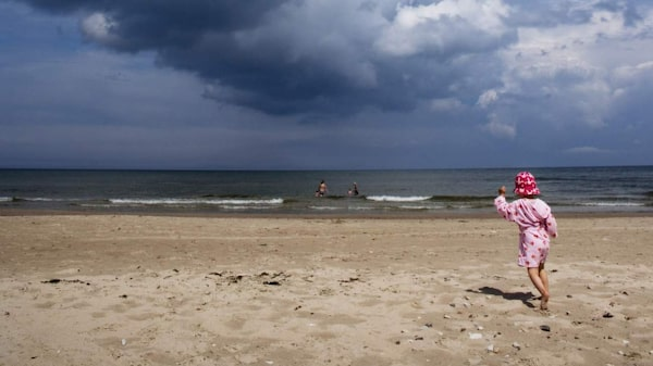 Fårös absolut vildaste och vackraste strand, Norsta Auren.