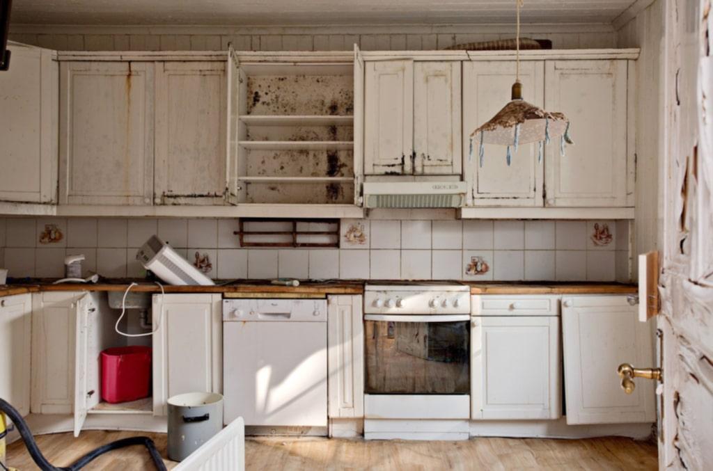 Köket är, precis som övriga rum, mögelskadat.