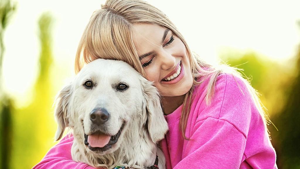 Föredrar du att mysa med din hund över din partner?