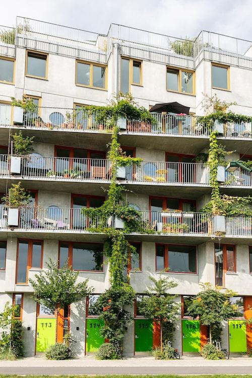 De första två våningarna i huset består av cykelhotellet Ohboy. Ett annorlunda hotell där du får hyra både cykel och en mindre lägenhet med utgång mot gatan.