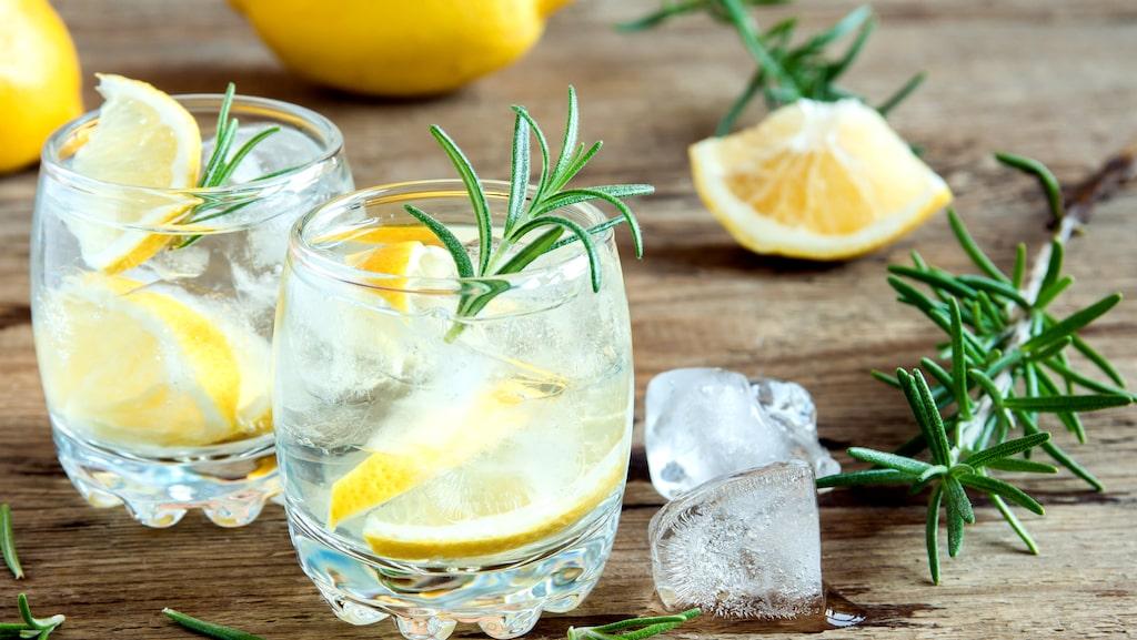 Gin är en sprisort som ofta används i drinkar som exempelvis gin och tonic.