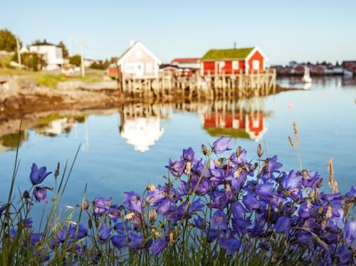 Norge har ett unikt landskap.