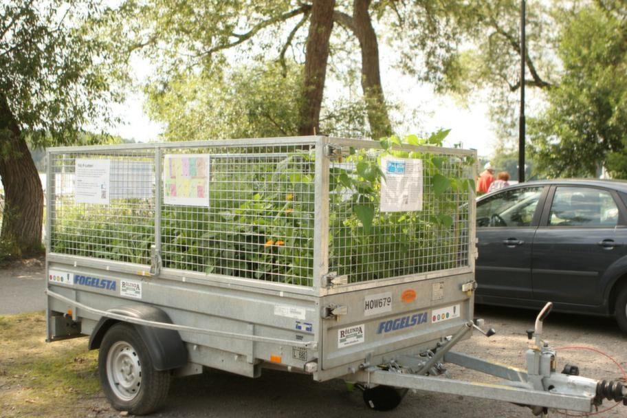 Rullande. <br>Så här ser P-lotten ut. Det är en mobil odling som uppkom för att peka på att det finns för få odlingslotter i staden. Förra sommaren var den parkerad på olika ställen i Stockholm och blev beundrad och fotograferad och inte vandaliserad.