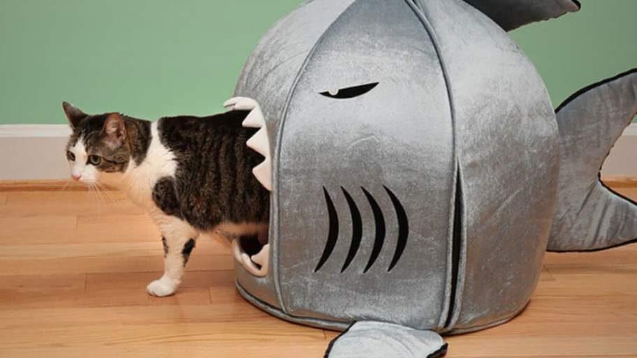 Och så klart: hajsängen!