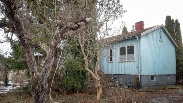 Precis som huset är även tomten misskött och växtlligheten har fått härja fritt.