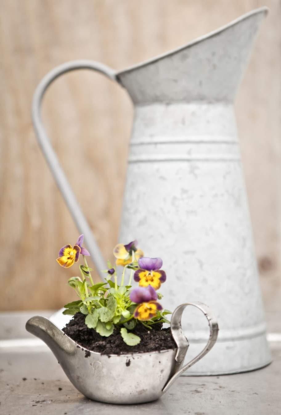 Plantera i allt fint du har; skålar, glasburkar, lådor eller kanske till och med i en såssnipa.