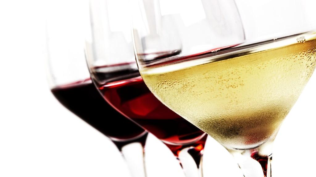 Upptäck Italiens minst kända vita och röda viner.