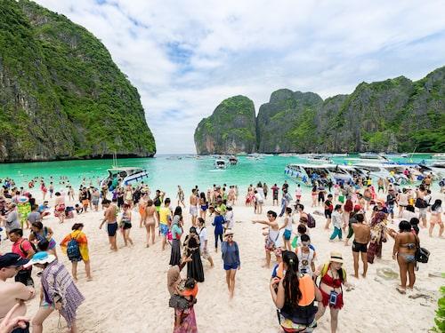 """Överturismen knäckte stranden känd från långfilmen """"The Beach""""."""