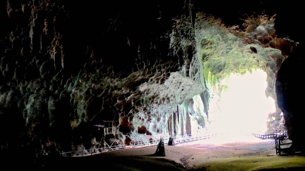 "<p>Gomantong-grottorna, Borneo.</p>  <p><a href=""https://www.flickr.com/photos/col_and_tasha/15433863146/in/photolist-fLhTmz-pvQzNJ-pgorhy-pgnEwH-pgoqAd-pxR8wN-pgoDrx-apL6Ev-pgor3L-jp3HmY-5bYLu6-pxSVkn-5c41nW-5c41aG-5bYLje-5c42YW-5c42Fo-5c42hY-5c41TE-5bYJwz-5c3ZNq-pxR6FU-qLWGkw-e6fTr3-it7Vou-jbq1hL-hVZG8w-dc8tc4"" target=""_blank"">FOTO: Col Ford and Natasha de Vere/Flickr</a></p>"