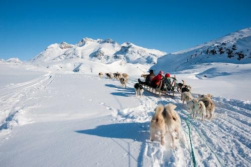 Utflykter med hundspann är en populär aktivitet för turister i Tasiilaq.