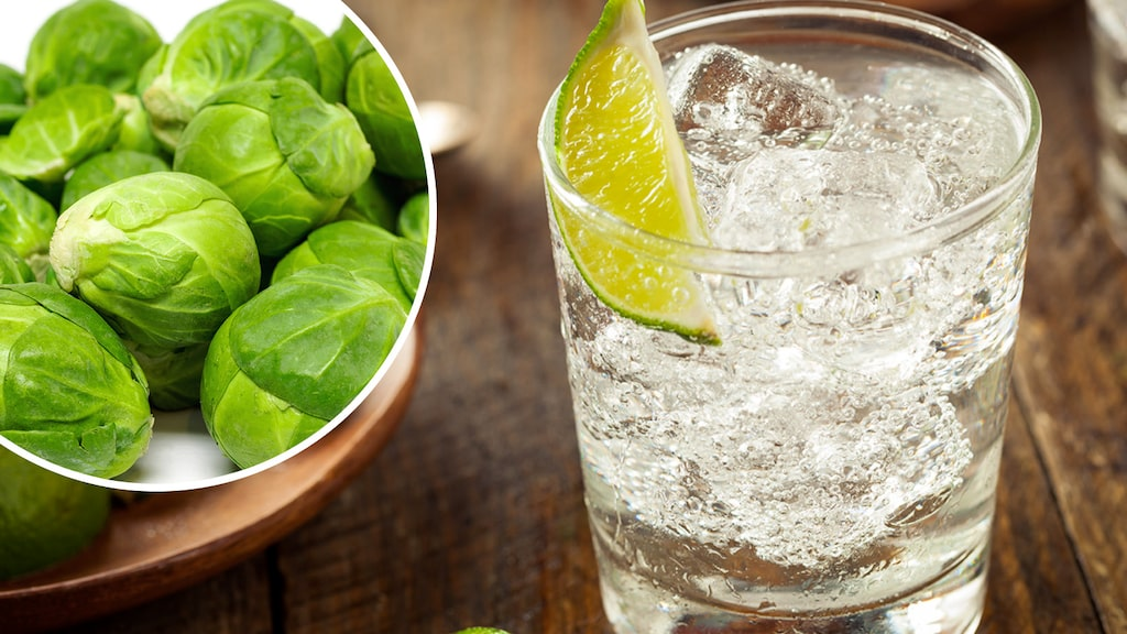 Nu finns en ny gin som är smaksatt med brysselkål. En succé till jul?