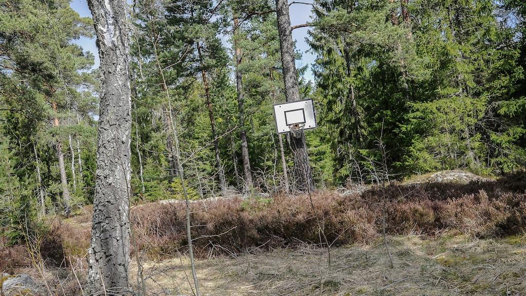 På den numera igenvuxna basketplanen har barn spelat en gång i tiden.