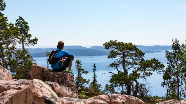 Höga kusten erbjuder såväl utsiktsberg som djup urskog.