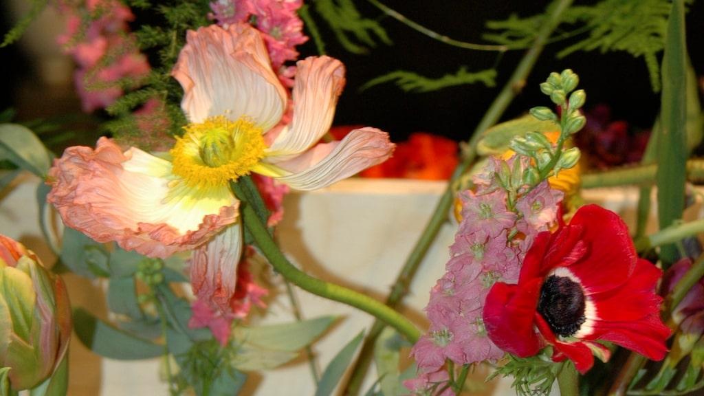 På årets trädgårdsmässa syntes flera vackra blomsterarrangemang.